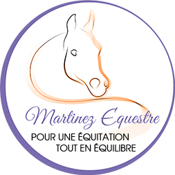 cours equitation particuliers 35 50